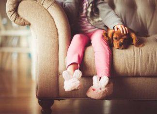 Beneficios de los Animales para Niños