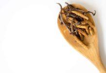 Qué es el Cordyceps y la gran cantidad de beneficios para la salud